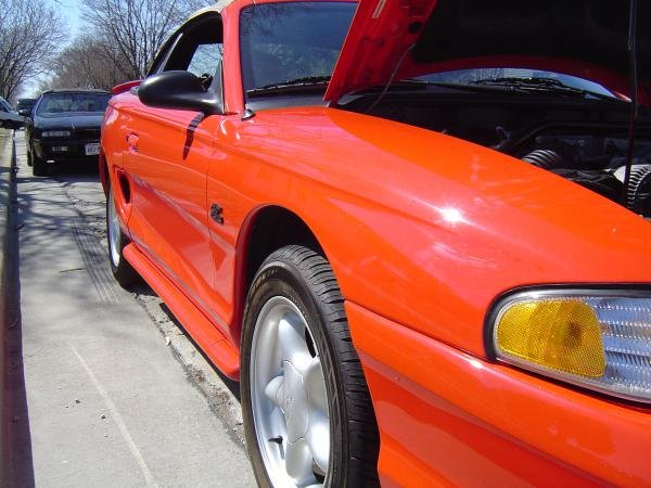 Showcase cover image for F8LBYTE's 1994 Ford Mustang GT