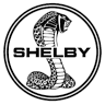 Shelby Mustangs R # 1